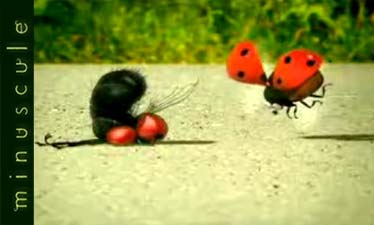 Minuscule, questi piccoli e buffi insetti 3d