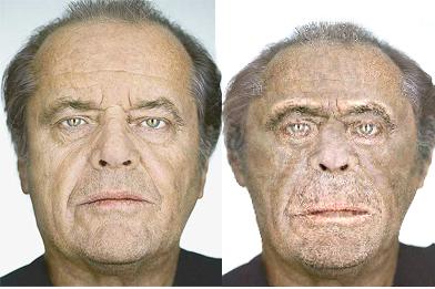 Face Transformer: stufi della vostra faccia? Da oggi si cambia!