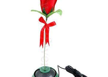 La Rosa Microfono