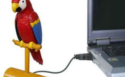 USB Parrot: pappagallo che ripete tutto!