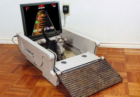CatBox 360: Guitar Hero per felini!