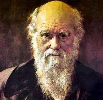 Darwin Online: appunti, disegni e studi del Naturalista in un enorme sito archivio