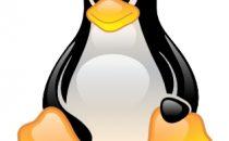 Linux sul 20% degli smartphone nel 2013