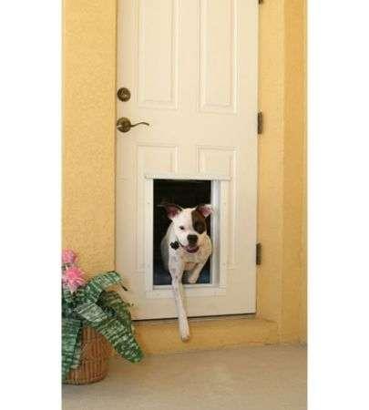 Porta Automatica con RFID per Cani