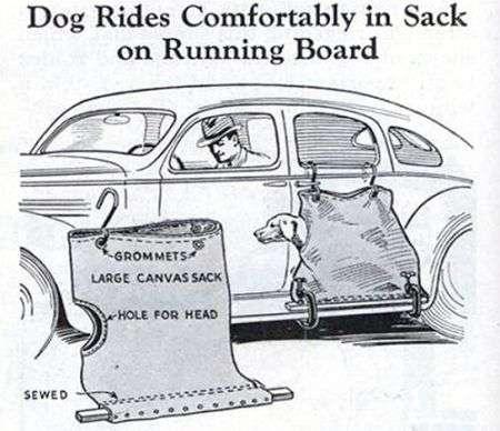 Inquietante porta cani dal passato