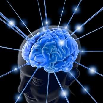 Cervello: un chip per stimolare l'orgasmo
