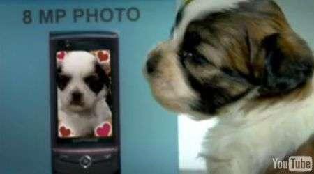 Samsung Ultra Touch: buffo spot con cuccioli