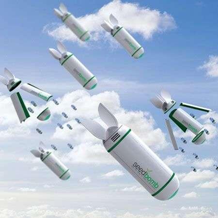 Seedbomb: bombardamento ecologico anti-deforestazione
