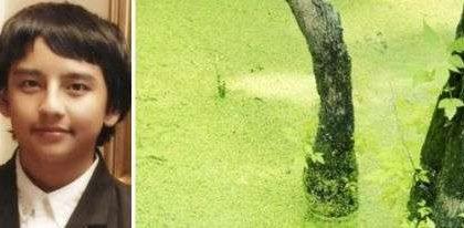 Sistema alimentato ad alghe inventato da 15enne