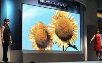 Mitsubishi OLED TV 155 pollici