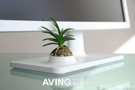 BenQ V2400 Eco, il monitor ecologico con pianta allegata