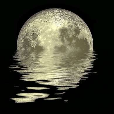 """Luna: c'è acqua """"in significativa quantità"""""""