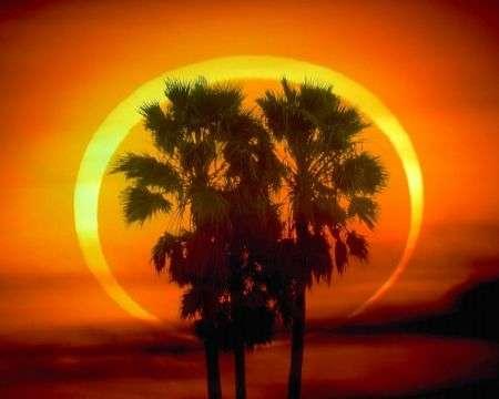 Eclisse Solare Anulare 15 Gennaio: la più lunga del millennio