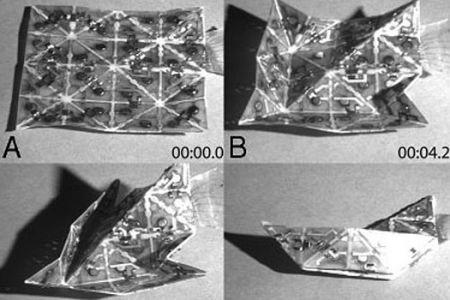 Origami 2.0: foglio intelligente che si auto-piega, video!