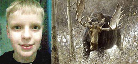 12enne norvegese salva la sorella da un alce grazie a WoW