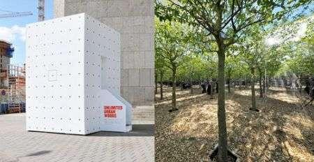 Foresta infinita dentro una scatola ad Amsterdam