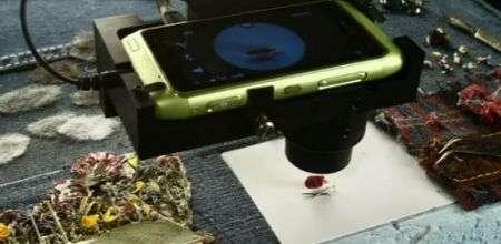 """Nokia N8 cattura il cortometraggio più """"piccolo"""" al mondo"""