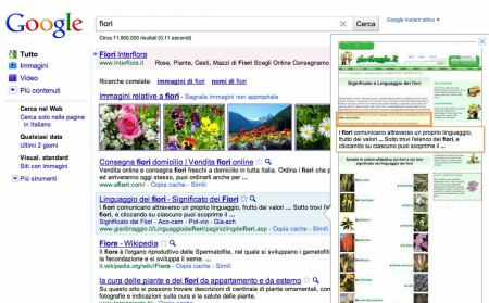 Google Anteprima Istantanea: una finestra sui risultati senza aprire i siti