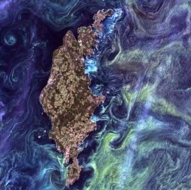 NASA: Van Gogh dallo Spazio, il fitoplancton disegna la Notte Stellata