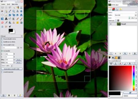 Foto online: modificare, ridimensionare e condividere le foto su web