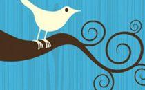 Social Network: Twitter rifiuta offerte milionarie da Facebook e Google