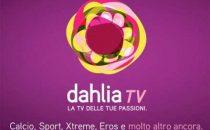 Dahlia TV in fallimento: come essere rimborsati?