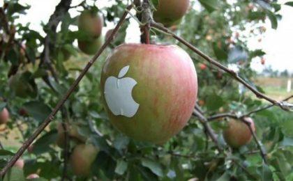 Apple, Google e IBM: il nuovo podio del valore dei brand