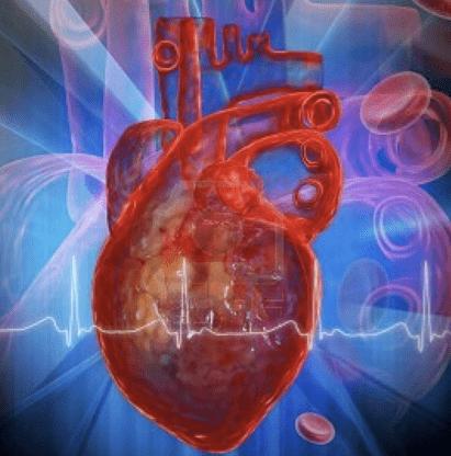 Un cuore artificiale monitorabile via Internet, impiantato a Milano