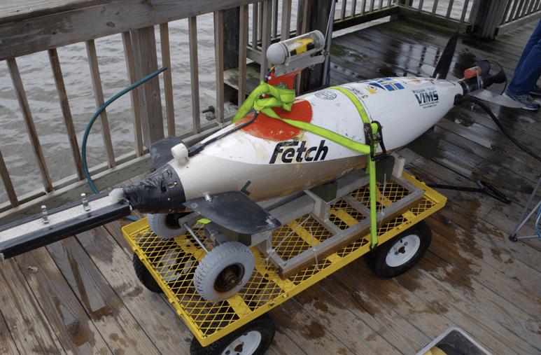 robot marino