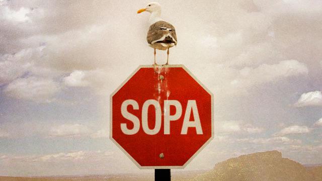 sopa ACT