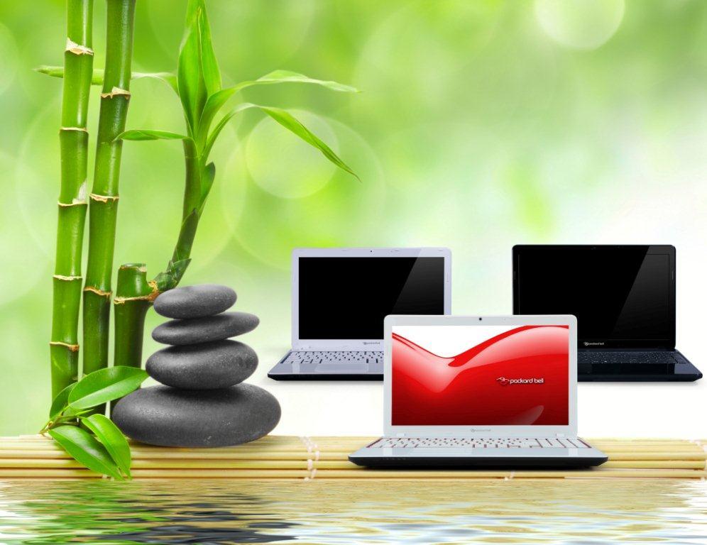 Packard Bell EasyNote V i notebook esotici in bambù
