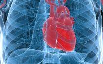 Cuore in 3D, la nuova tecnologia medica anti-infarto