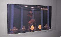 3D TV Panasonic senza occhialini da 103 pollici a IFA 2012