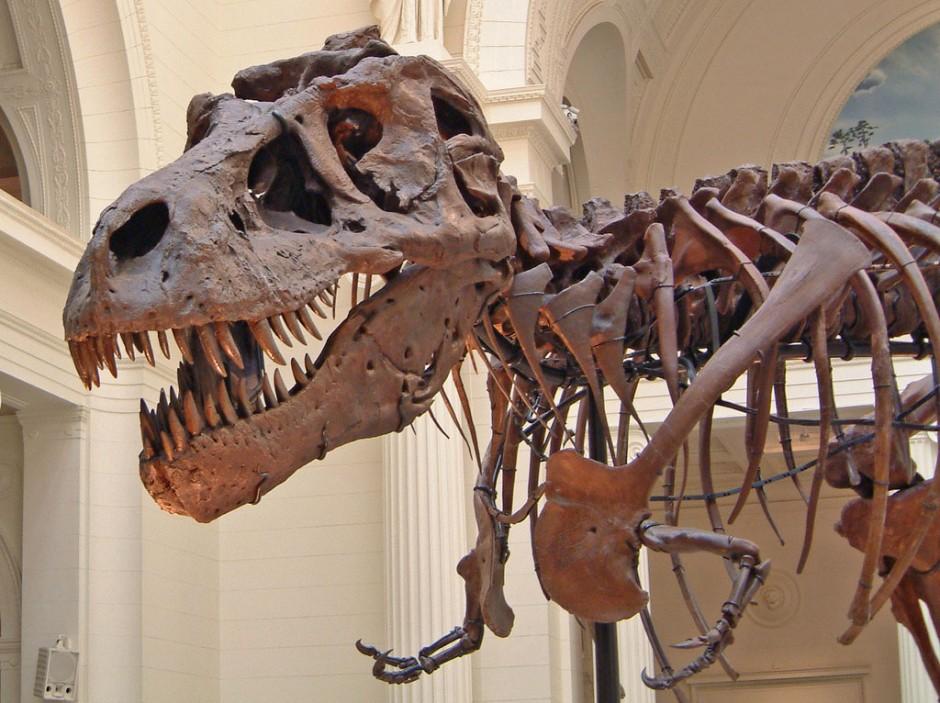dinosauri robotici 3d