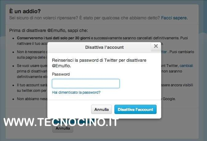 inserimento password per cancellazione twitter