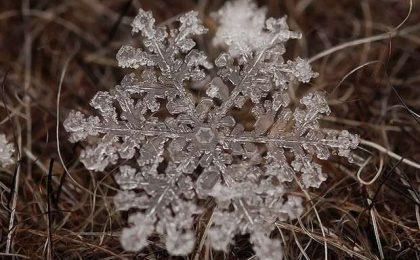 Fiocchi di neve fotografati in super macro [FOTO e VIDEO]