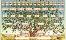 Albero Genealogico: come ricostruirlo online