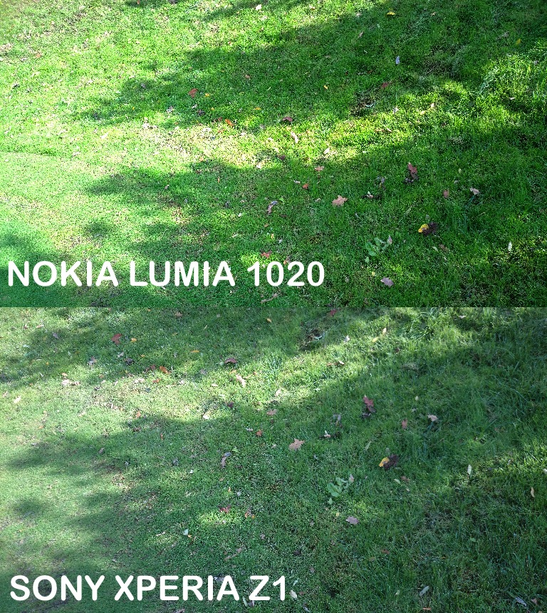 Z1 vs 1020 luci ombre