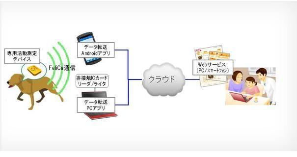 Fujitsu collare cani Android