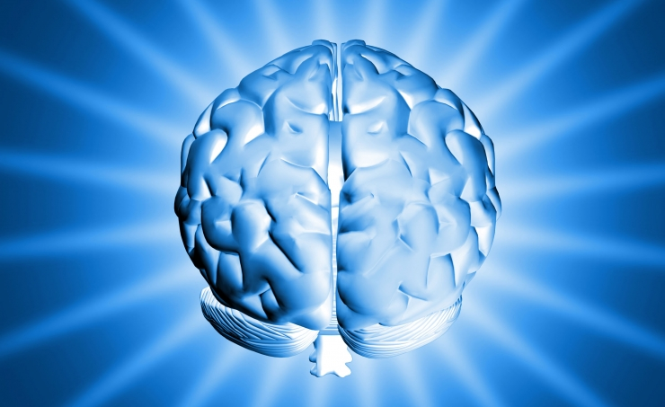 Impianto cerebrale per recuperare i ricordi dimenticati