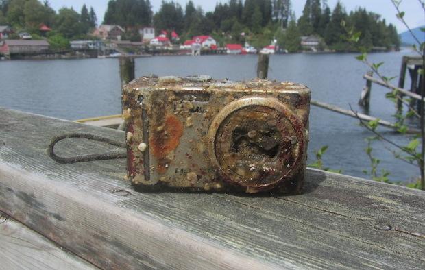 """Fotocamera persa nell'oceano """"ritrova"""" su Twitter i proprietari dopo 2 anni"""