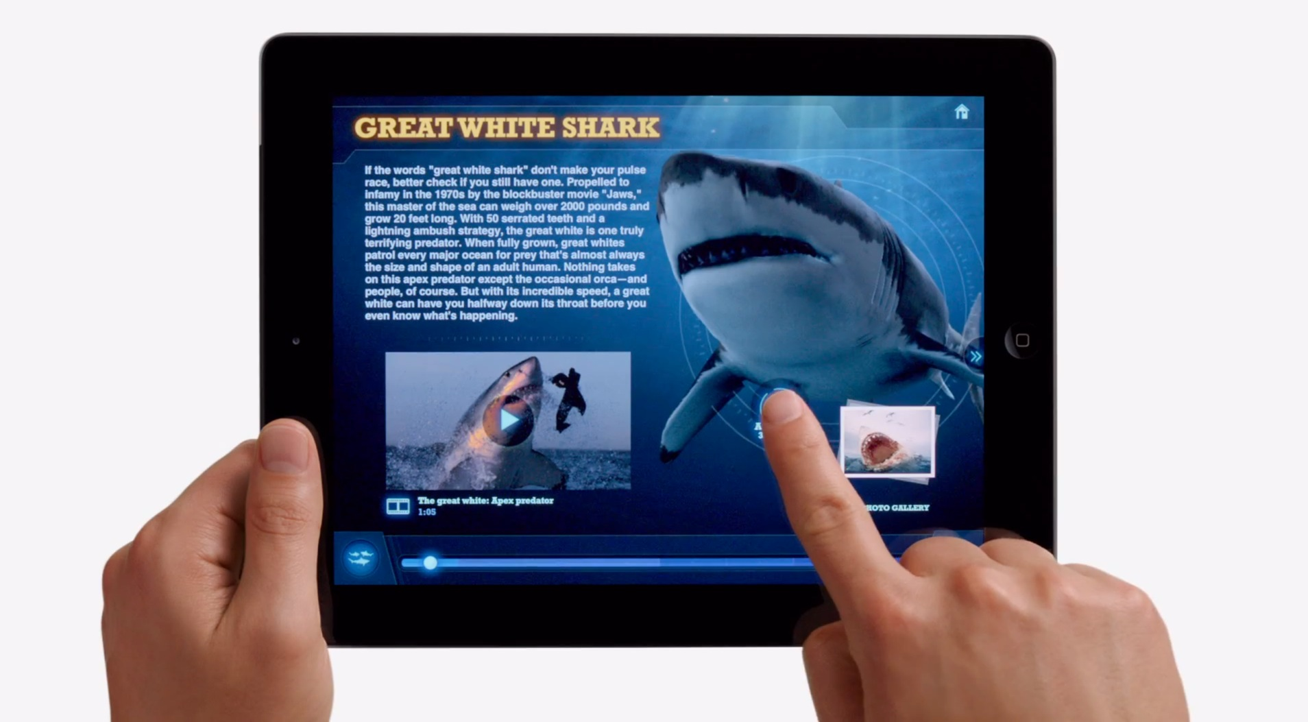 I 5 migliori tablet con SIM da iPad Mini a Nexus 7