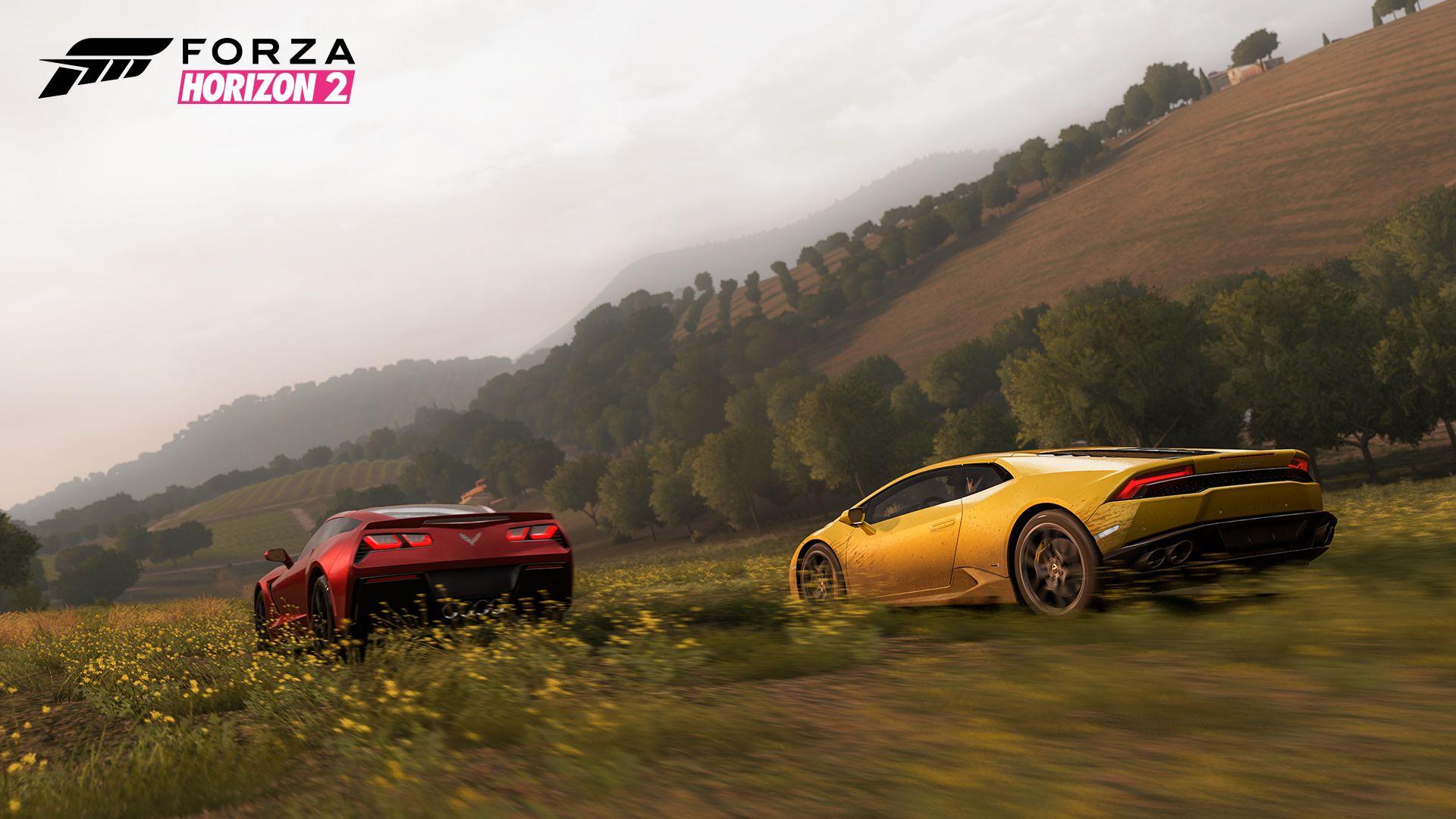 Forza Horizon 2 gare