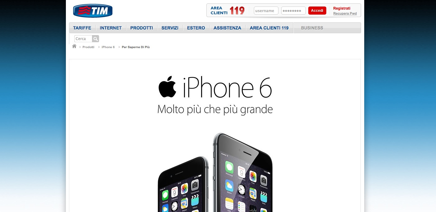 iPhone 6 TIM