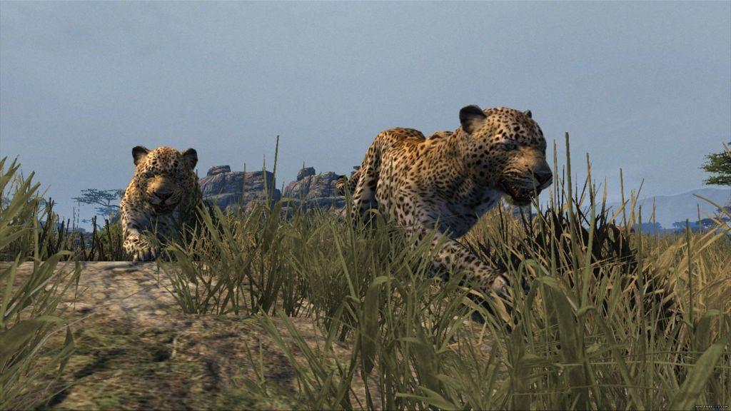 GTA V ghepardo