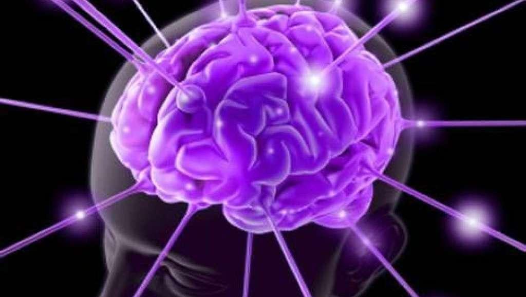 Percepiamo i sapori grazie al cervello, le rivelazioni di una nuova ricerca