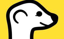 Meerkat app: come funziona e come usarla