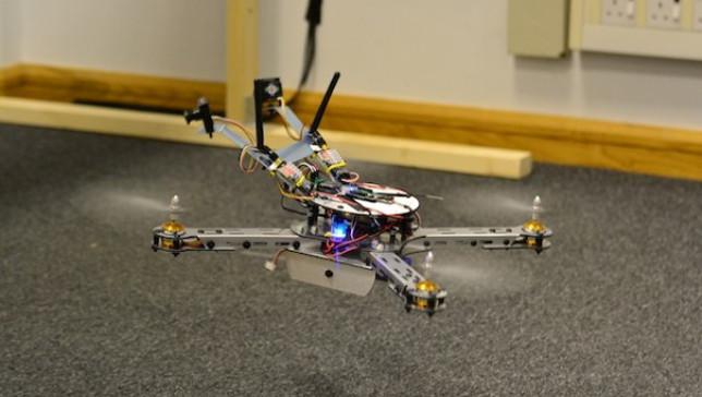 Mappato il cervello di un'ape per migliorare i droni