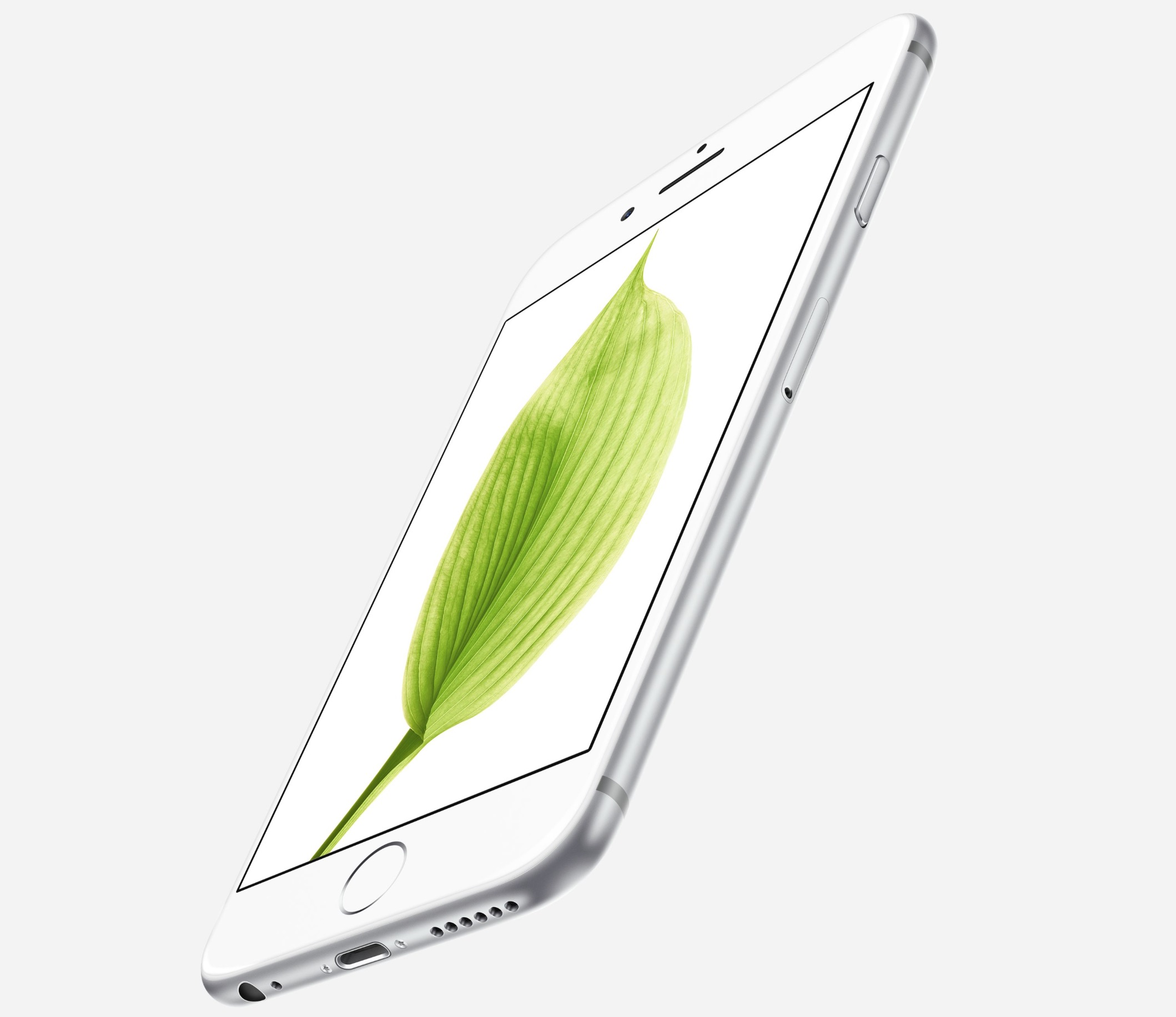 Fronte iPhone 6s