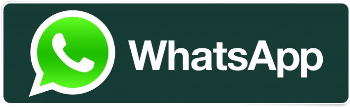Nuovo WhatsApp: bug nella versione beta